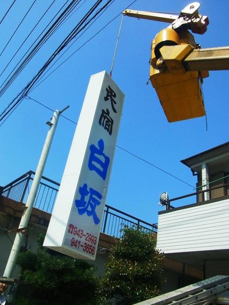 shirasaka3.jpg
